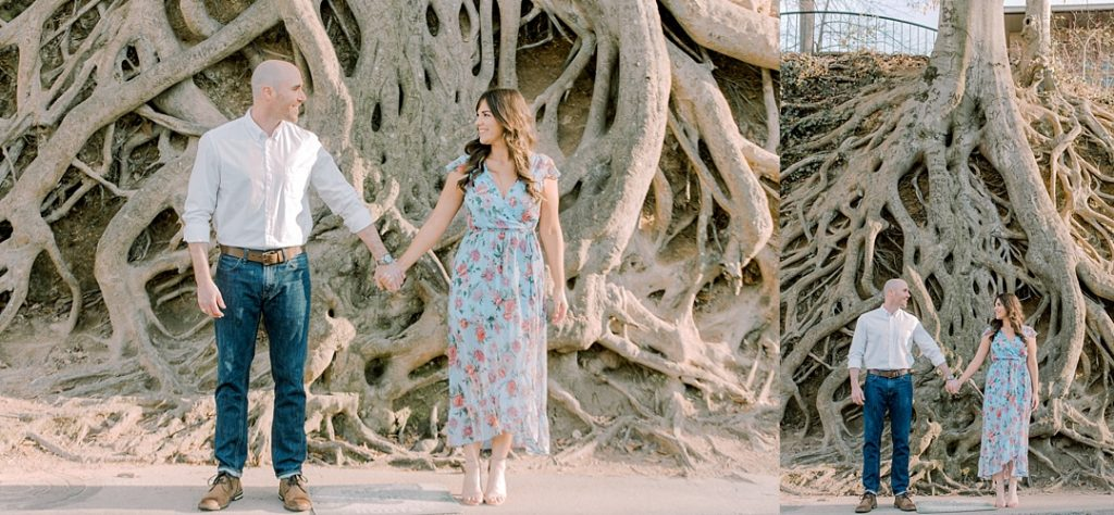 medusa tree falls park greenville sc weddings greenville sc engagement session melissa brewer photography